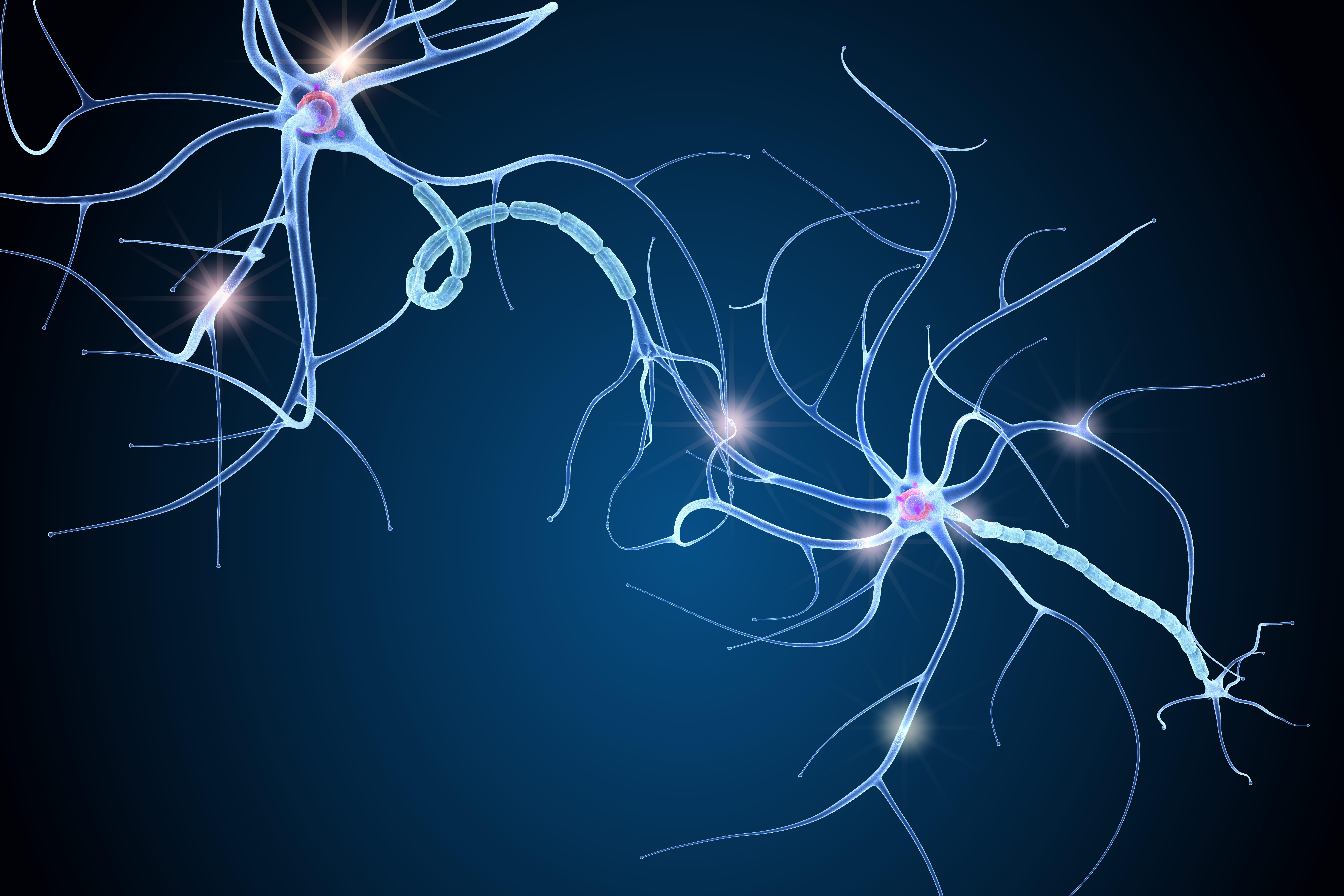 Bilde av nerveceller, getty images